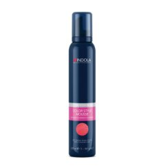 Indola Color Style Mousse Silber 200ml